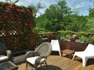 The Austinite - Unit A 2/1 with beautiful patio! - Austin vacation rentals