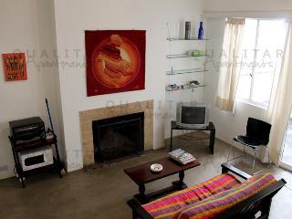 Comfortable apartment on Tres Sargentos and Reconquista st - Plaza San Martin. (197CE) - Buenos Aires vacation rentals