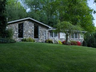 Wilderness Retreat - Secluded Retreat 12 Miles To Downtown Asheville And The Biltmore Estate (Pet Friendly) - Asheville vacation rentals