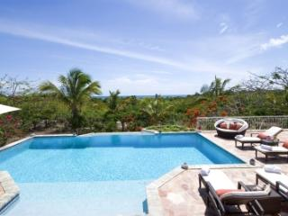 Large 4 Bedroom Villa with Swimming Pool near Plum Bay Beach - Plum Bay vacation rentals