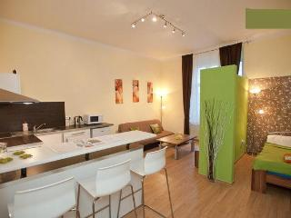 Lovely Apartment Just For You - Prague vacation rentals