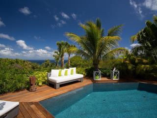 Modern 3 Bedroom Villa on the Hillside of Vitet - Saint Barthelemy vacation rentals