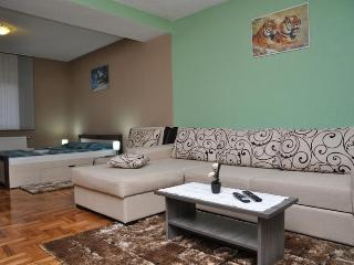 Modern Apt near Plitvice and Rastoke Waterfalls - Plitvica vacation rentals