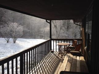 Ez Livin W Asheville - Leicester vacation rentals