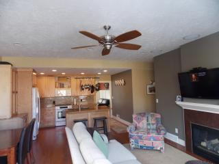 Millcreek area remodel. Minutes to the canyons! - Salt Lake City vacation rentals