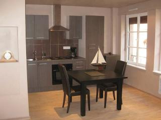 One-Bedroom Apartment, 1 minute walk from Strasbourg Cathedral, Old Town - Alsace vacation rentals