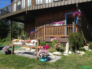 Fire and Ice Lodging - Anchor Point vacation rentals