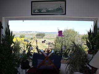 Country Home, by river, close to Atlantic beaches - Figueira da Foz vacation rentals