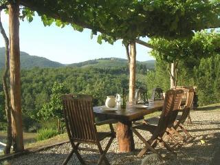Chianti Cashmere - San Giovanni Valdarno vacation rentals