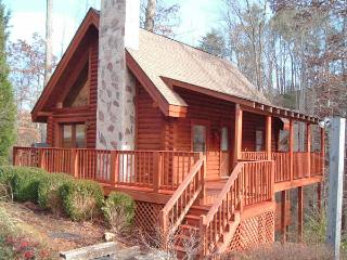 ER45 - CRITTERS NEST - Pigeon Forge vacation rentals