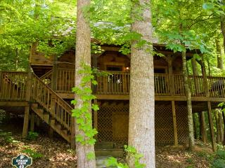 ER49 - DREAM VIEW - Pigeon Forge vacation rentals