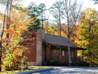 ER90 - TREASURED MOMENTS - Pigeon Forge vacation rentals