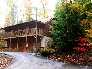 ER225 - VIV'S VIEW - Pigeon Forge vacation rentals
