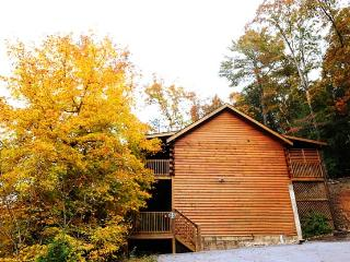 ER261 - SMOKY MOUNTAIN HIGH - Pigeon Forge vacation rentals