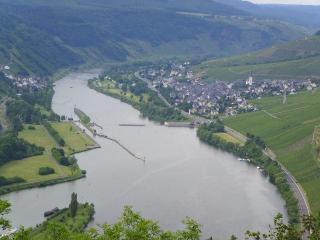 big apartment with beergarden - Rhineland-Palatinate vacation rentals