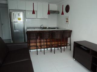 WONDERFUL SUITE IN FRONT OF THE SEA OF ANGRA-RIO - Mambucaba vacation rentals