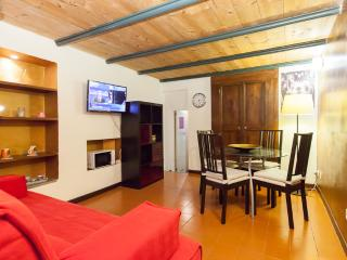 Flat in Trevi Fountain-Spain Square - Rome vacation rentals