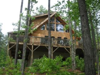 Lake House - Asheville vacation rentals