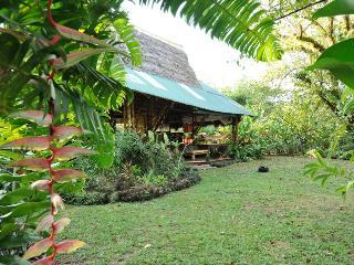 Bamboo Jungle Beach House - Puerto Jimenes vacation rentals
