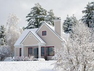 Spacious, modern style chalet with view of Mount O - Knowlton vacation rentals