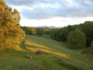 Best View Hideaway - Weaverville vacation rentals