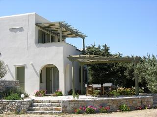 Two bed villa with sea view, walk-in rainshower - Naxos vacation rentals
