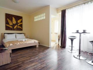 H7 Intimate & Modern Studio/Horizon Apartment Studium Green H7 - Romania vacation rentals