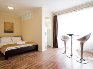 H8 Lovely Studio Apartment for 2/ Horizon Apartment Studium Green H8 - Cluj-Napoca vacation rentals
