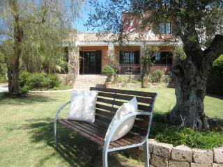 Villa Grazia - Amazing garden with own orchard - Chia vacation rentals