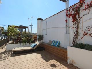 Miro duplex penthouse - Barcelona vacation rentals
