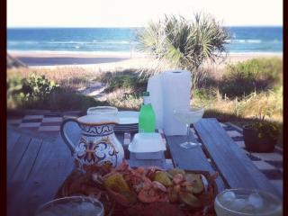 Oceanfront Villa In Ormond Beach/Daytona Area - Ormond Beach vacation rentals