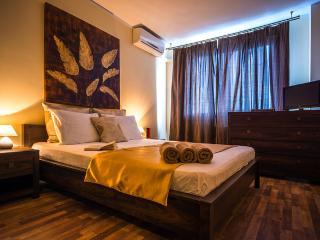 B1 Big Executive/ Family apartment/Horizon Apartment Calea Turzii - B1 - Cluj-Napoca vacation rentals