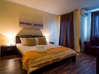 S1 City View Deluxe Studio/Horizon Apartment Calea Turzii - S1 - Cluj-Napoca vacation rentals