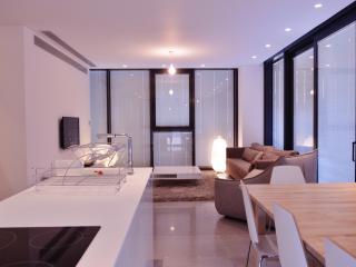 Luxurious 3 bedroom apartment - Tel Aviv vacation rentals