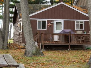 Big Bunk House Cabin Sleeps 25-30+ - Prudenville vacation rentals