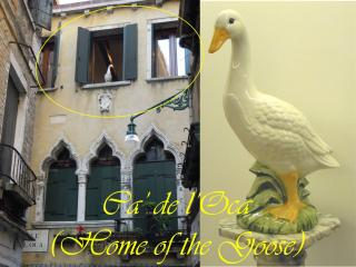 Ca' de l'Oca,  luxury centre 3/4 bedrooms 3 baths - Venice vacation rentals