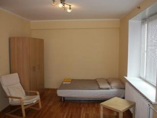 Cozy one-room apartment Aeroport - Central Russia vacation rentals