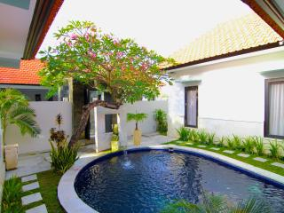 Lake Grace Villa-Legian 1 BR Pool Villa STUNNING! - Legian vacation rentals