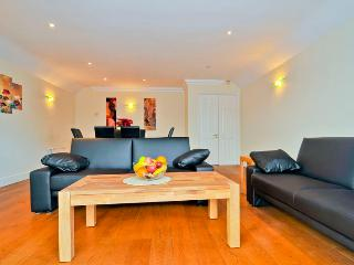 large and functional apartment in Putney SW London - London vacation rentals