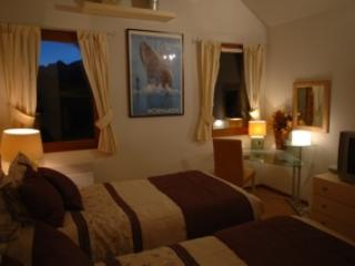 Les Ecureuils/Squirrel Lodge Ski Apartment France - Isere vacation rentals