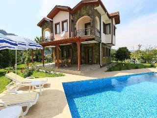 Luxury villa,large private pool,beautiful garden,f - Dalyan vacation rentals