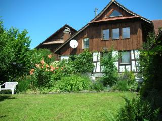 Tranquil, cosy with Alpine views - Lucerne vacation rentals