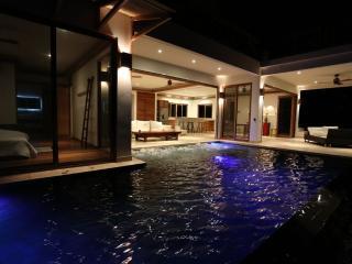 Villa Oasis - Ocean View & Infinity - Tambor vacation rentals