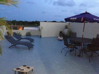 Penthouse w/ Big Rooftop Terrace & Lighthouse View - Lajas vacation rentals