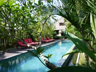 LUXURY Villa Budi Million$ Ricefield Views in Ubud - Ubud vacation rentals