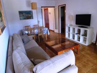 Cel Blau 2-2 - Lloret de Mar vacation rentals