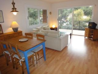 Cel Blau 3-1 - Lloret de Mar vacation rentals