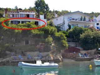Apartment in Villa Hraste 8+1 - Hvar vacation rentals