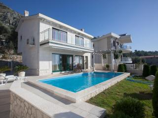 Villa with swimingpool in Budva - Sveti Stefan vacation rentals