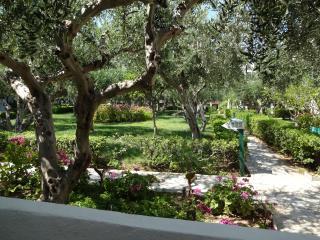 Studios in Southeast Crete. - Sitia vacation rentals